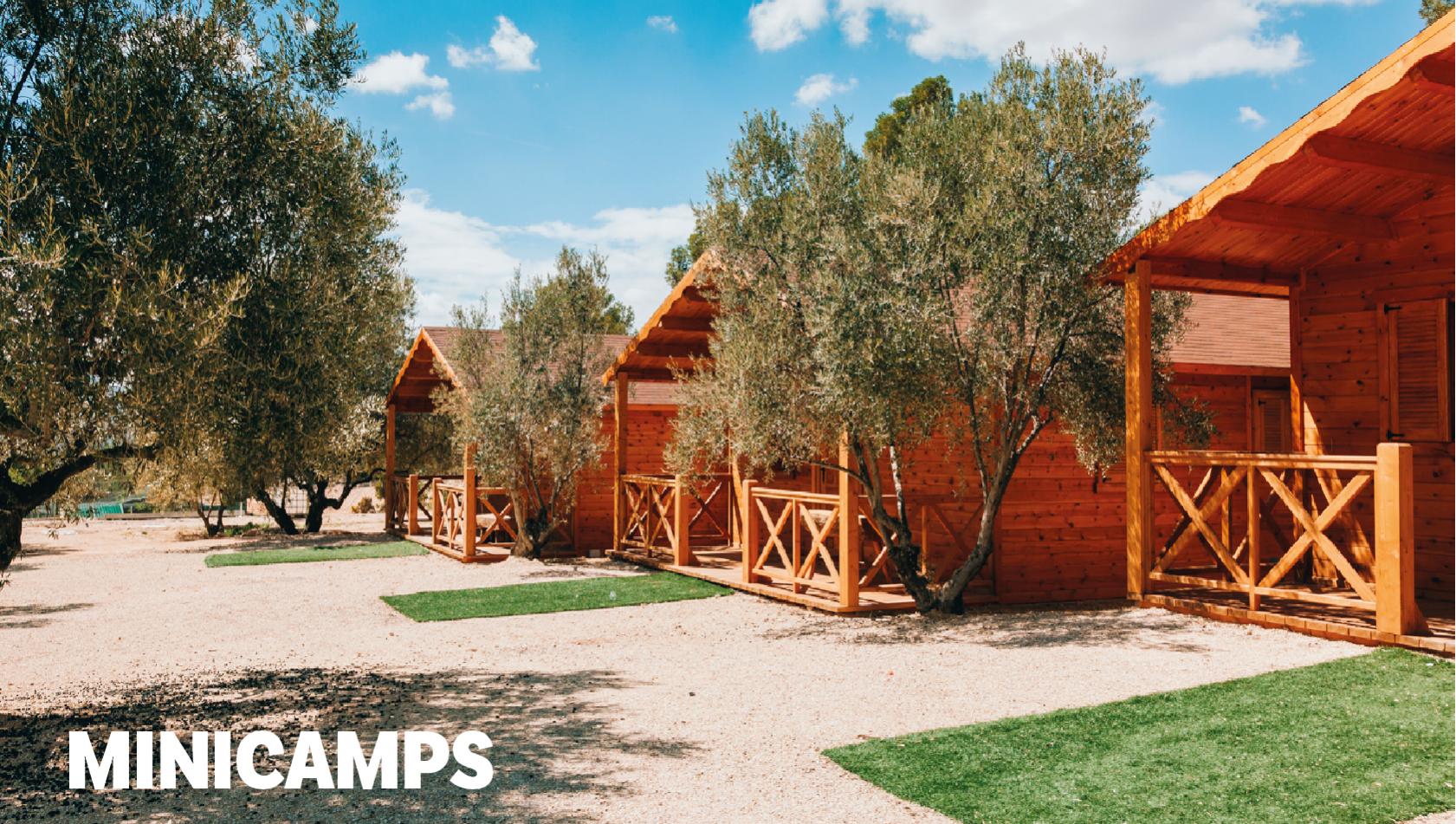 Minicamps